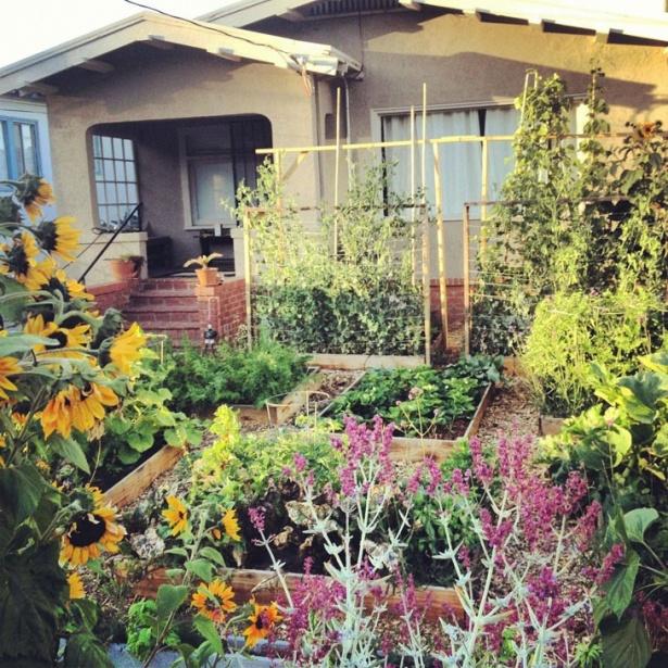 Bucuraţi-vă privirea cu această grădină! Nu-i aşa că e minunată?