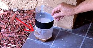 Cum să ţii ţânţarii la distanţă întreaga vară. Este atât de simplu şi ieftin!