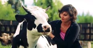 animalele-au-nevoie-de-dragoste