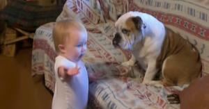 bebe-discuta-cu-catelul