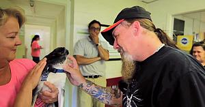 După 8 luni de chin, acest bărbat şi-a regăsit câinele. Momentul marii întâlniri este atât de emoţionant!