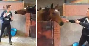 Proprietara începe să danseze pe o melodie cunoscută. Acum priviţi ce face calul ei...