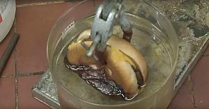 Experimentul care a surprins milioane de oameni. După ce veţi vedea acest lucru, vă veţi gândi serios dacă mai mergeţi la McDonald's!