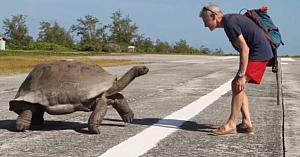 Un bărbat dă nas în nas cu o ţestoasă uriaşă, apoi află că nu e binevenit în cel mai amuzant mod