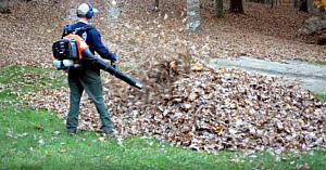 Tatăl iese afară cu o suflantă de frunze, apoi are parte de spaima vieţii lui când descoperă ce se ascunde în morman