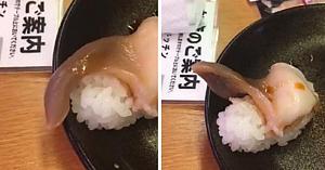 Sushi revine la viaţă într-un restaurant şi încearcă să scape din farfuria clientului