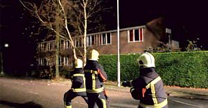 Pompierii încearcau să doboare un copac: Nu se pot opri din râs când văd cine le sare în ajutor