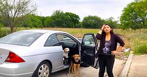 O femeie surprinsă în timp ce-şi abandona cei 4 câini primeşte ceea ce merita