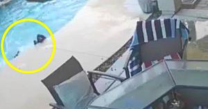 Câinele neajutorat se îneca în piscină - apoi camera de supraveghere surprinde un salvator neaşteptat