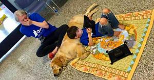 Acest băieţel cu autism nu lăsa pe nimeni să-l atingă - Acum priviţi momentul emoţionant când întâlneşte un câine