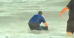 Aflat în timpul unei transmisiuni în direct, corespondentul întrerupe reportajul pentru a salva un pui de delfin eşuat pe plajă