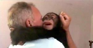 Puiul de cimpanzeu se revede cu cei care i-au salvat viaţa. Reacţia lui a uimit o lume întreagă