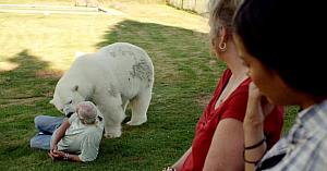 La 18 ani după ce puiul de urs polar a fost salvat, răspunsul emoţional faţă de cel care l-a crescut îi lasă pe toţi fără cuvinte