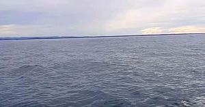Şi-a îndreptat camera spre larg când deodată barca începe să se clatine şi toţi au parte de o experienţă unică
