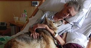 Dorinţa unui om grav bolnav de a-şi vedea câinele pentru ultima oară e momentul pe care oamenii nu îl vor uita niciodată
